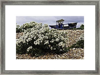 Dungeness Seascape Framed Print by Lesley Rigg