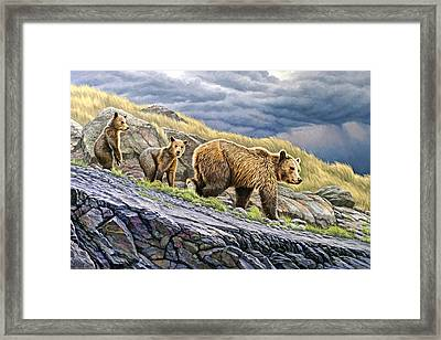 Dunraven Pass Grizzly Family Framed Print