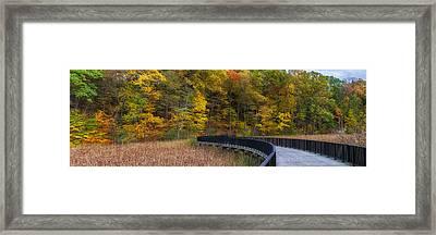 Durand Eastman Park Framed Print