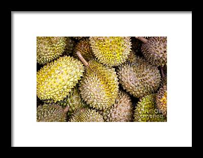 Beautifully Designed Durian Fruit Art Pixels