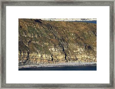 Durlston Cliff Framed Print by Colin Varndell