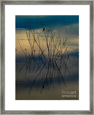 Dusk Framed Print by Christy Ricafrente