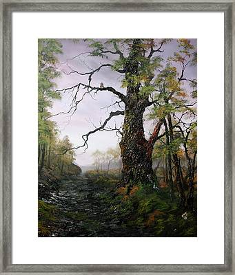 Dusk On Canncok Chase Framed Print by Jean Walker