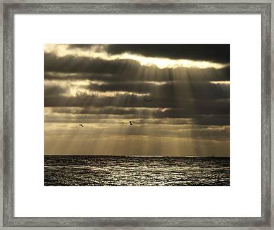 Dusk On Pacific Framed Print