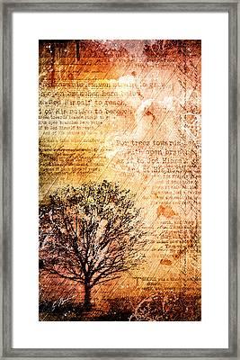 Dusk Soliloquy Framed Print