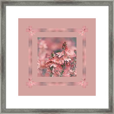 Dusky Pink Ribbons Framed Print