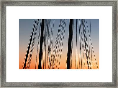 Dusky Ropes Framed Print