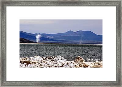 Dust Devils Of Mono Lake Framed Print