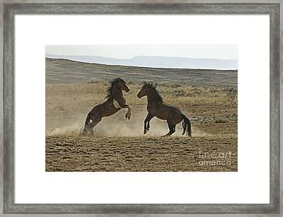 Dust Up At Mccullogh Peaks Framed Print by Bob Dowling