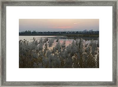 Dusters Framed Print