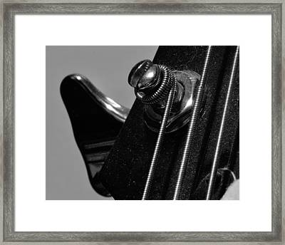 Dusty Bass Framed Print