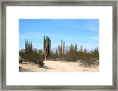 Dusty Road Framed Print