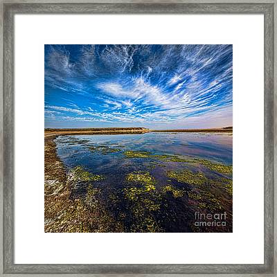 Dutch Delight Framed Print