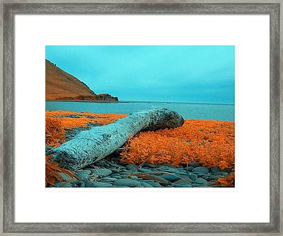 Dutch Harbor Alaska Framed Print