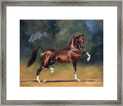Dutch Harness Horse Saffraan Framed Print by Jeanne Newton Schoborg