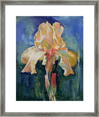 Dutch Iris Framed Print