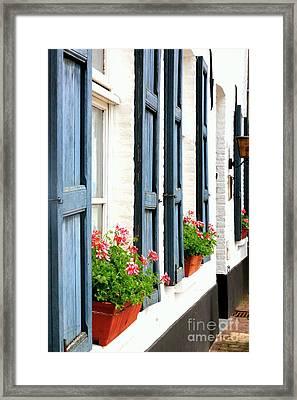 Dutch Window Boxes Framed Print by Carol Groenen