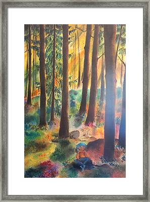 Dwarf In Wermlands Forest Framed Print by Rosa Garcia Sanchez