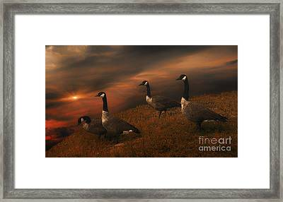 Dwellers On The Threshold Framed Print by Tom York Images