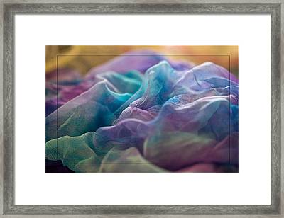 Dyed Silk Framed Print by Liz  Alderdice