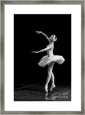 Dying Swan 8. Framed Print