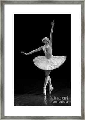 Dying Swan 9. Framed Print