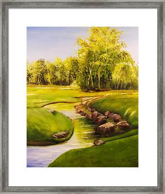 Dylan's Creek Framed Print