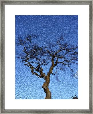 Dynamic Dawn Framed Print
