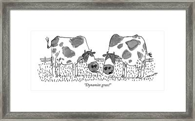 Dynamite Grass! Framed Print by Jack Medof