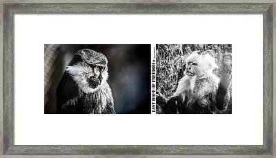 Framed Print featuring the photograph diptych Last hope of Freedom  by Stwayne Keubrick