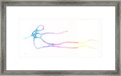 E Strain White Rainbow Framed Print by Rob Hans