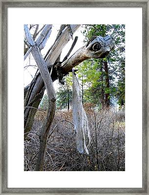 E T Framed Print by Will Borden