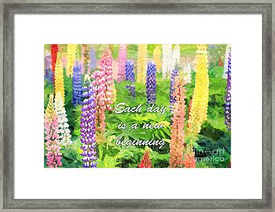 Each Day Is A New Beginning Colorful Lupine Flowers Framed Print by Beverly Claire Kaiya