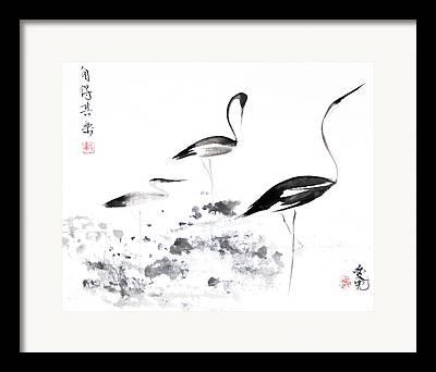 Crane Framed Prints