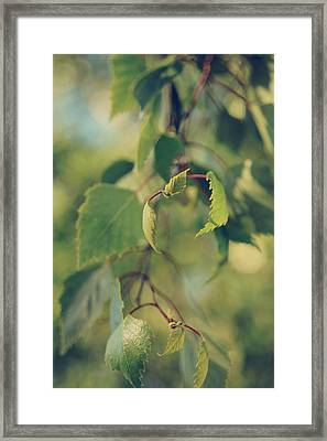 Each Sight Framed Print
