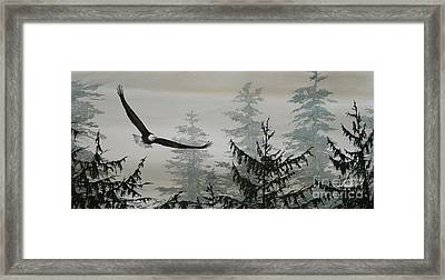 Eagle And Cedars Framed Print