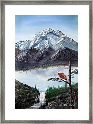 Eagle At Denali Framed Print by Stephen Schaps