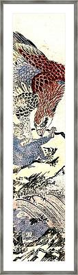 Eagle Attacking  Monkey 1772 Framed Print by Padre Art