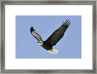 Eagle Class Framed Print by RJ Martens