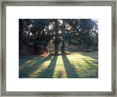 Eagle Creek Afternoon Framed Print