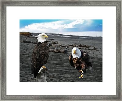 Eagle Determination Framed Print by Debra  Miller
