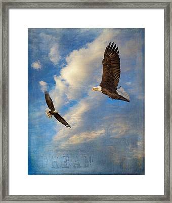 Eagle Dream Framed Print by Angie Vogel