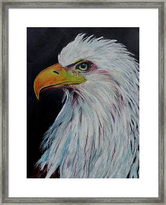 Eagle Eye Framed Print by Jeanne Fischer