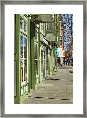 Eagle House Framed Print