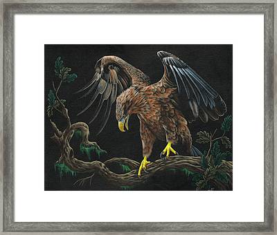 Eagle In Darkness Framed Print by Heather Bradley