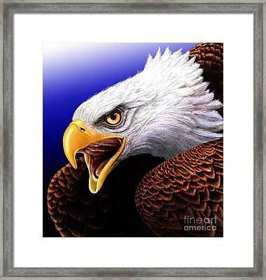 Eagle Framed Print by Jurek Zamoyski