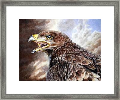 Eagle Cry Framed Print
