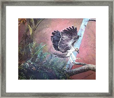 Eagle Light Framed Print