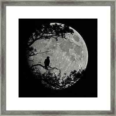Eagle Moon Framed Print by Ernie Echols