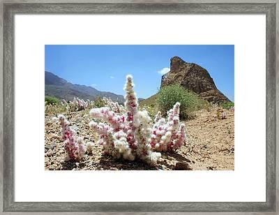 Eagle Mountain Framed Print by Babak Tafreshi